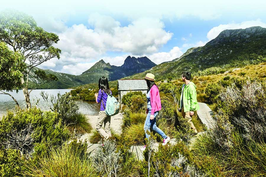 a family hiking in cradle mountain national park. image tourism tasmania