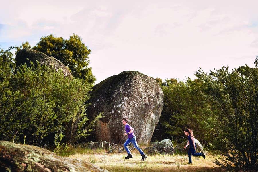 children running in tidbinbilla nature reserve. image stuart miller