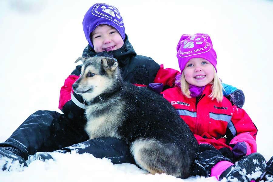 harriniva hotels safaris huskies 72