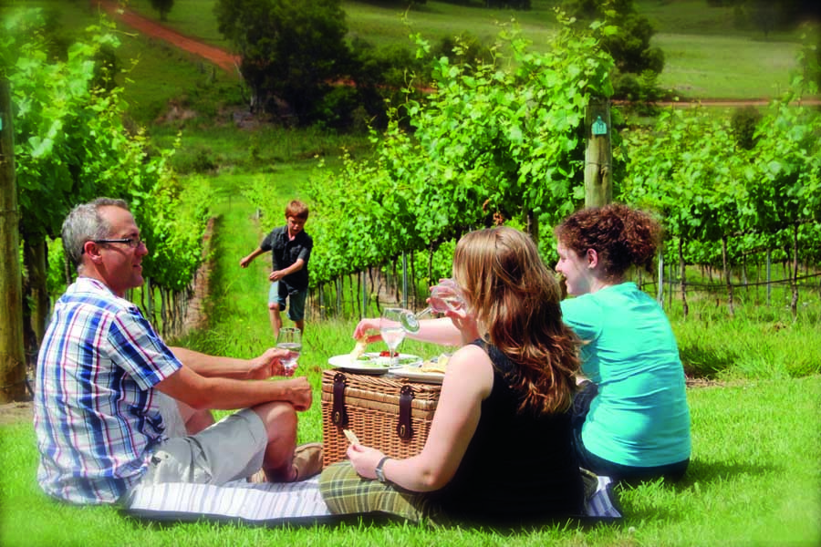 picnic among the vines at ocean view estates on the sunshine coast