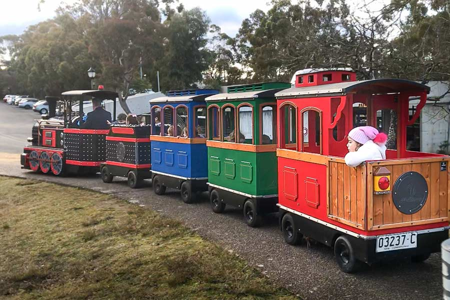 blue mountains christmas in july toy train