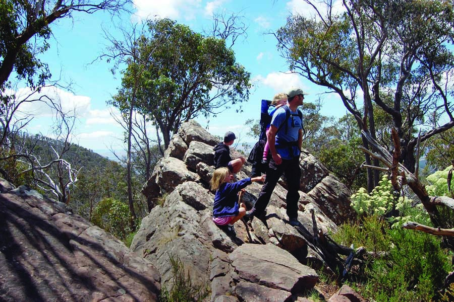 a familiy hiking in cathedral ranges state park. image northern victoria