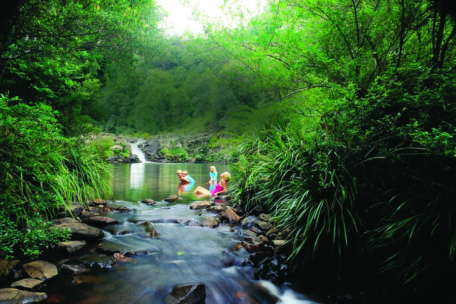 a family at gardners falls in the glass house mountains. image tourism and events queensland