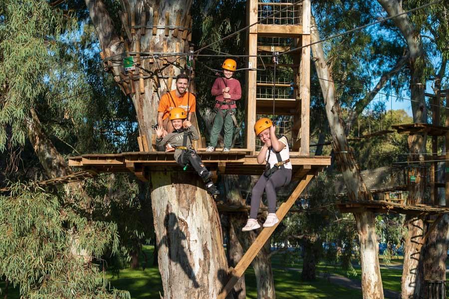 go ziplining at treeclimb in adelaide