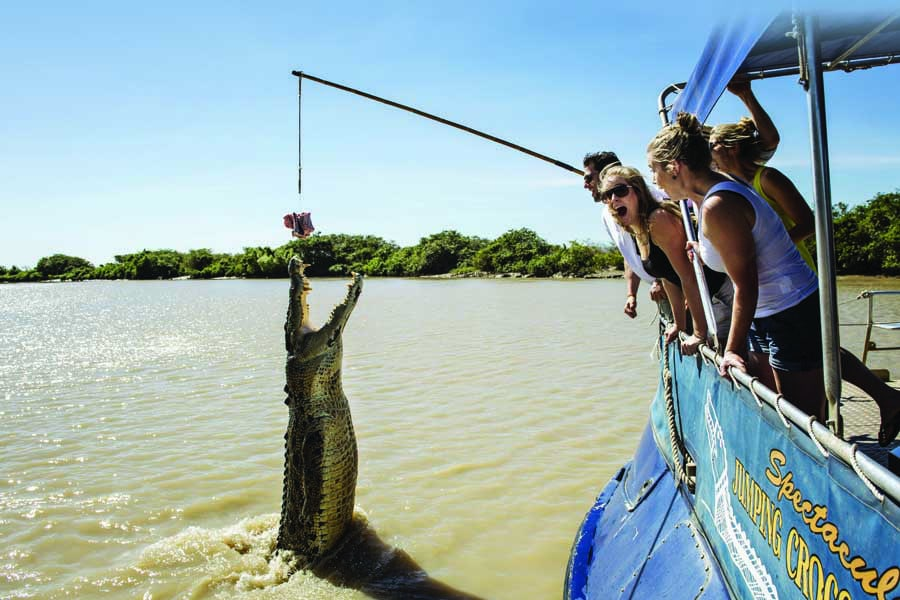 a jumping croc on the adelaide river in kakadu national park. image tourism nt shaana mcnaught ext