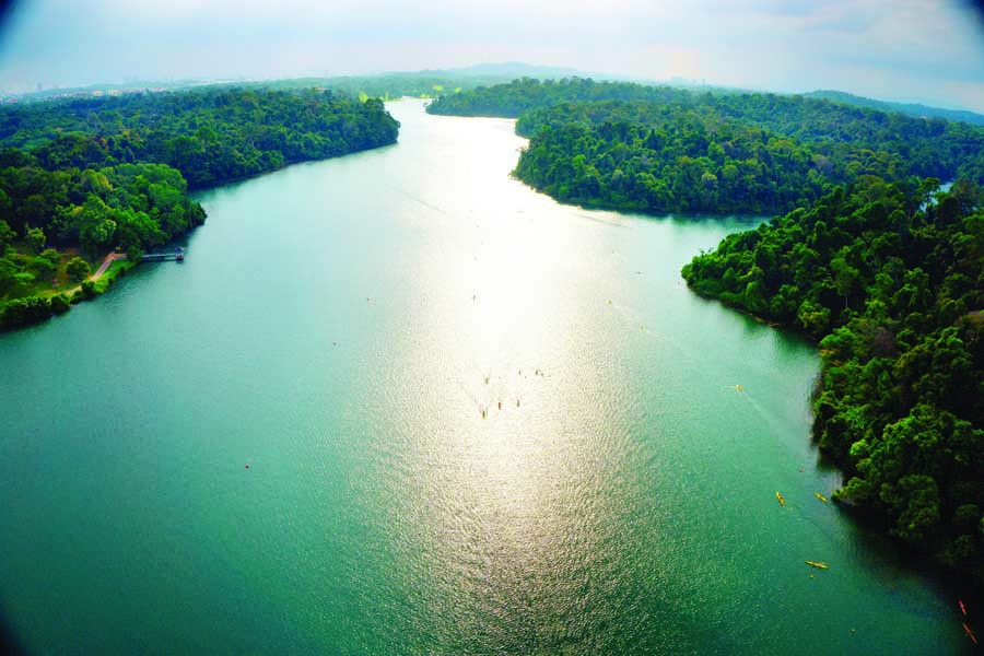 an aerial view of macritchie reservoir park. image by darren soh