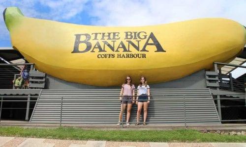 Big Banana 0679 1
