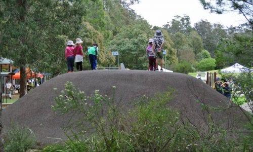 Credit Eurobodalla Regional Botanic Gardens