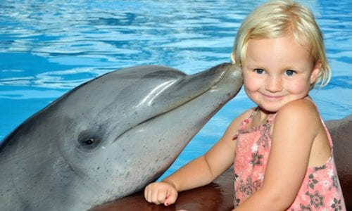 Dolphin Kiss Child Female 01
