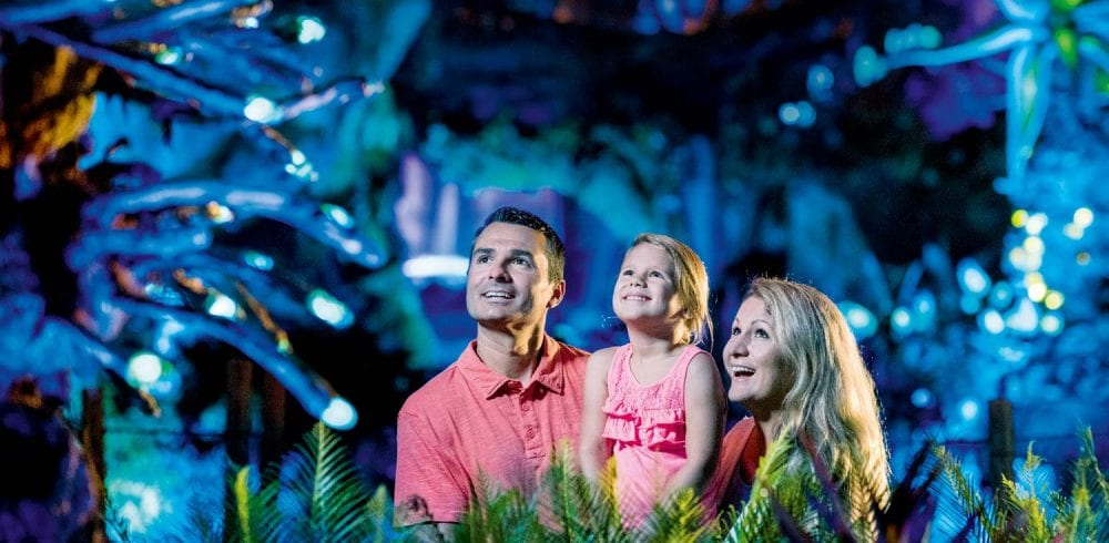 Pandora The World of Avatar at Disneys Animal Kingdom at World Disney World Resort in Florida Image Kent Phillips