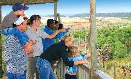SA 560 Kids on Safari Shamwari Game Reserve 21