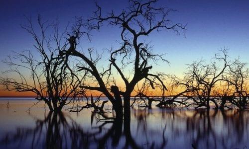 Sunset over Menindee Lake in Kinchega National Park western NSW3