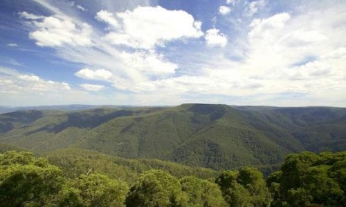 View from Thunderbolts Lookout Barrington Tops National Park CREDIT Hamilton Lund Nat Parks etc