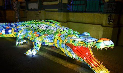 Vivid crocodile