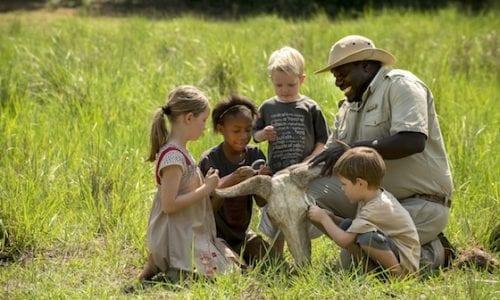 WildChild Family Safari 2