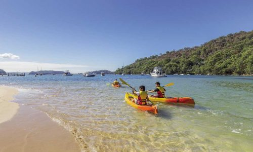 feature wattamolla in the royal national park. image destination nsw