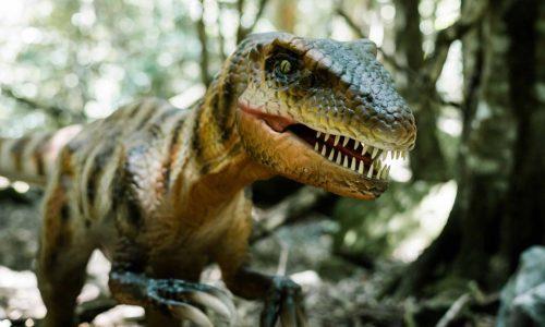 scenic world dinosaur valley