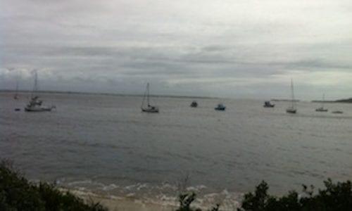 shoal bay 560